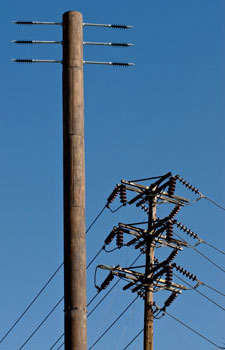 image of a fake telephone pole Cell Tower