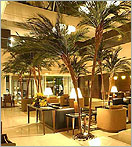 Click here to see our line of Indoor Fake Palm Trees