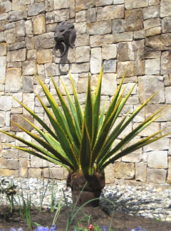 image of a fabricated tropical plant