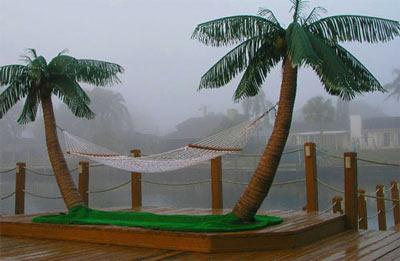 Custom Made Palm Trees Hammocks