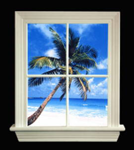Tropical Illuminating Window Pictures