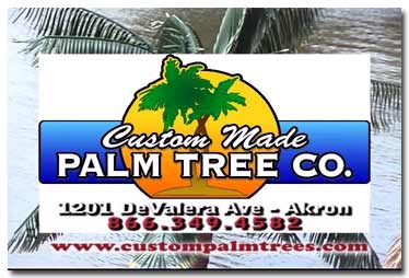 Custom Palm Trees Product Video